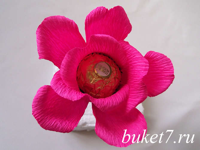 Роза из ферреро22