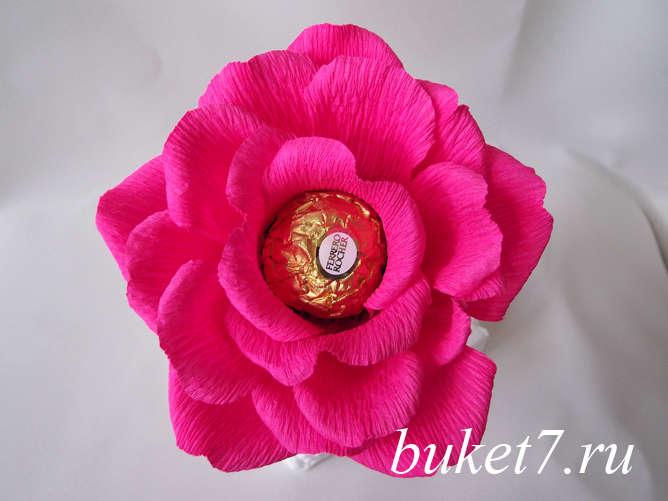 Роза из ферреро24