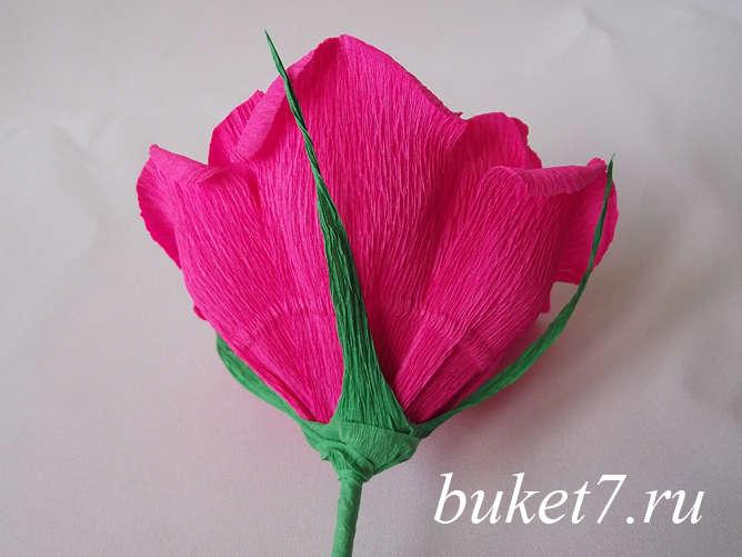 Роза из ферреро26