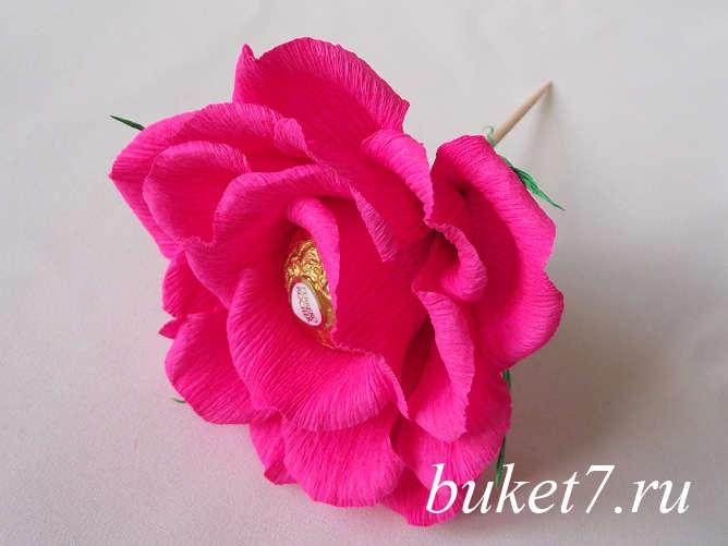 Роза из ферреро27