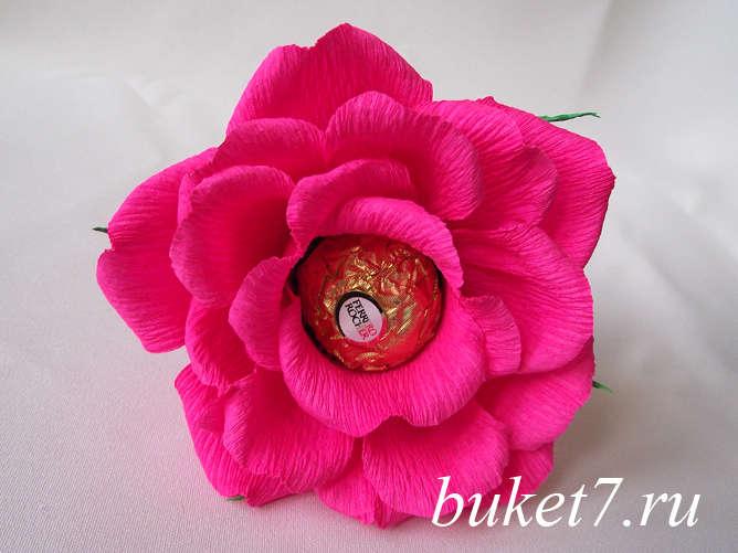 Роза из ферреро28